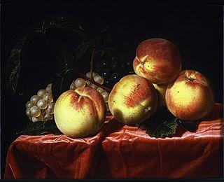 Charlotte Vignon born 1639; Frans