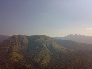Charmadi - Charmadi Ghat - Dakshina Kannada