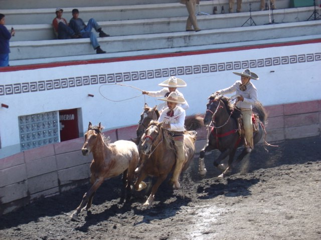 Charros competing in a charreada in Mexico