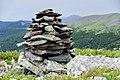 Chemalsky District, Altai Republic, Russia - panoramio (53).jpg