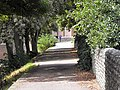 Chichester City Wall - geograph.org.uk - 2028935.jpg