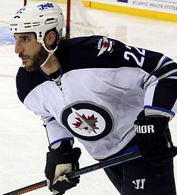 Chris Thorburn - Winnipeg Jets.jpg