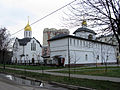 Church of Saint Alexander Nevsky (Balashikha) 16.jpg