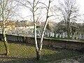 Cimitero ebraico di Via Stacche (Rovigo).jpg