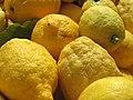 Citrons de Menton (close-up).jpg
