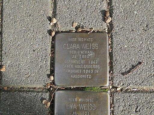 Clara Weiss Stolperstein Dresden