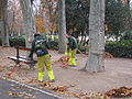 Cleaning the Retiro Park (6382427401).jpg