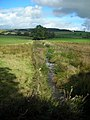 Cleuchbrae Burn at Manse Bridge - geograph.org.uk - 565268.jpg