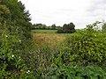 Clonnestin Townland - geograph.org.uk - 2048029.jpg