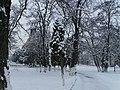 Cluj - calvaria - park.jpg