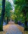 Cmentarz Najświętszej Marii Panny w Toruniu, jesień 2017.jpg