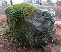 Coin Wish Stone, Balamaha.JPG