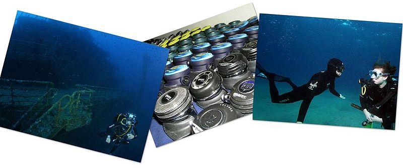 File:Collage tauchen 01 1024.jpg