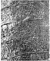 Coloana lui Traian (detaliu).jpg
