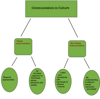 Interpersonal communication - This is a Communication Diagram showing the two different types of communication that can be done between cultures. It is then further broken down into how you appropriately communicate verbally or non verbally with individuals of different cultures.