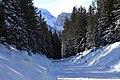 Cortina d'Ampezzo Passo Cimabanche - panoramio.jpg