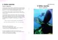 Couverture de Hélice marine - Théorie et application.xcf