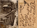 Covington Louisiana Tramline Bridge Postcard.jpg