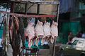 Cows heads intestines (3166948825).jpg