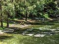 Crni Drim River 73.jpg