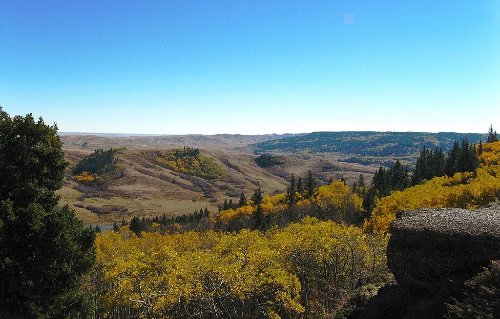landscape of Cypress Hills, Saskatchewan