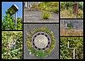 "Dülmen, Kirchspiel, ehem. Sondermunitionslager Visbeck, ""Natur"" -- 2020.jpg"