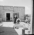Daliya al-Carmel. Dorpsgezicht een druzische man die een ezel voedert. Op de ac, Bestanddeelnr 255-2669.jpg