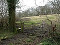 Damerham, stile - geograph.org.uk - 1779890.jpg