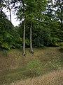 Danebury Ring - Defensive Ditch - geograph.org.uk - 936234.jpg