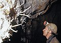 Darren Cilau Cave Llangattock - geograph.org.uk - 1195304.jpg