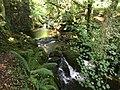 Dartmoor National Park waterfall.jpg