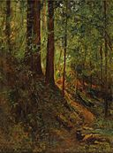 David Howard Hitchcock - Forest Scene, June 21, 1910.jpg