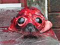 Dead Seal market Nuuk.jpg