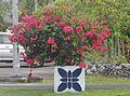 Decorated Bougainvillea Pot (30744363945).jpg