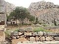Delphi 023.jpg