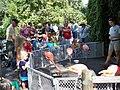 Denver Zoo Flamingo Talk.jpg