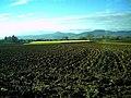 Dezember Kaiserstuhl - von March gesehen - panoramio.jpg