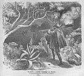 Die Gartenlaube (1863) b 211.jpg