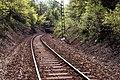 Die Rübelandbahn, Harz. 251 008-9 ,DDR May 1990 (4425068929).jpg