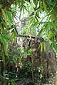 Dilapidated temple of Dalal para in Goghat PS, Hooghly district 19.jpg
