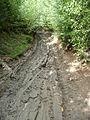 Dirt road, Ondřejovsko (3).jpg