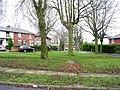 Dixon Avenue - Birks Avenue - geograph.org.uk - 1089988.jpg