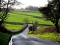 Down the hill on 31 December 2006 - geograph.org.uk - 317947.jpg