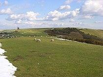 Downland, Combe - geograph.org.uk - 763929.jpg