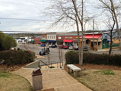 Downtown Morton, 2013