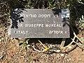 Dr Giuseppe Moreali Plaque.jpg