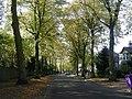 Dudlow Lane - geograph.org.uk - 1523851.jpg