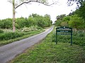 Dunwich Forest - geograph.org.uk - 431462.jpg