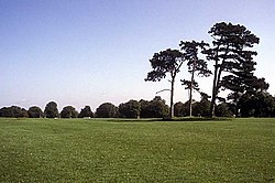 A view of Durdham Down, a large area of parkland.