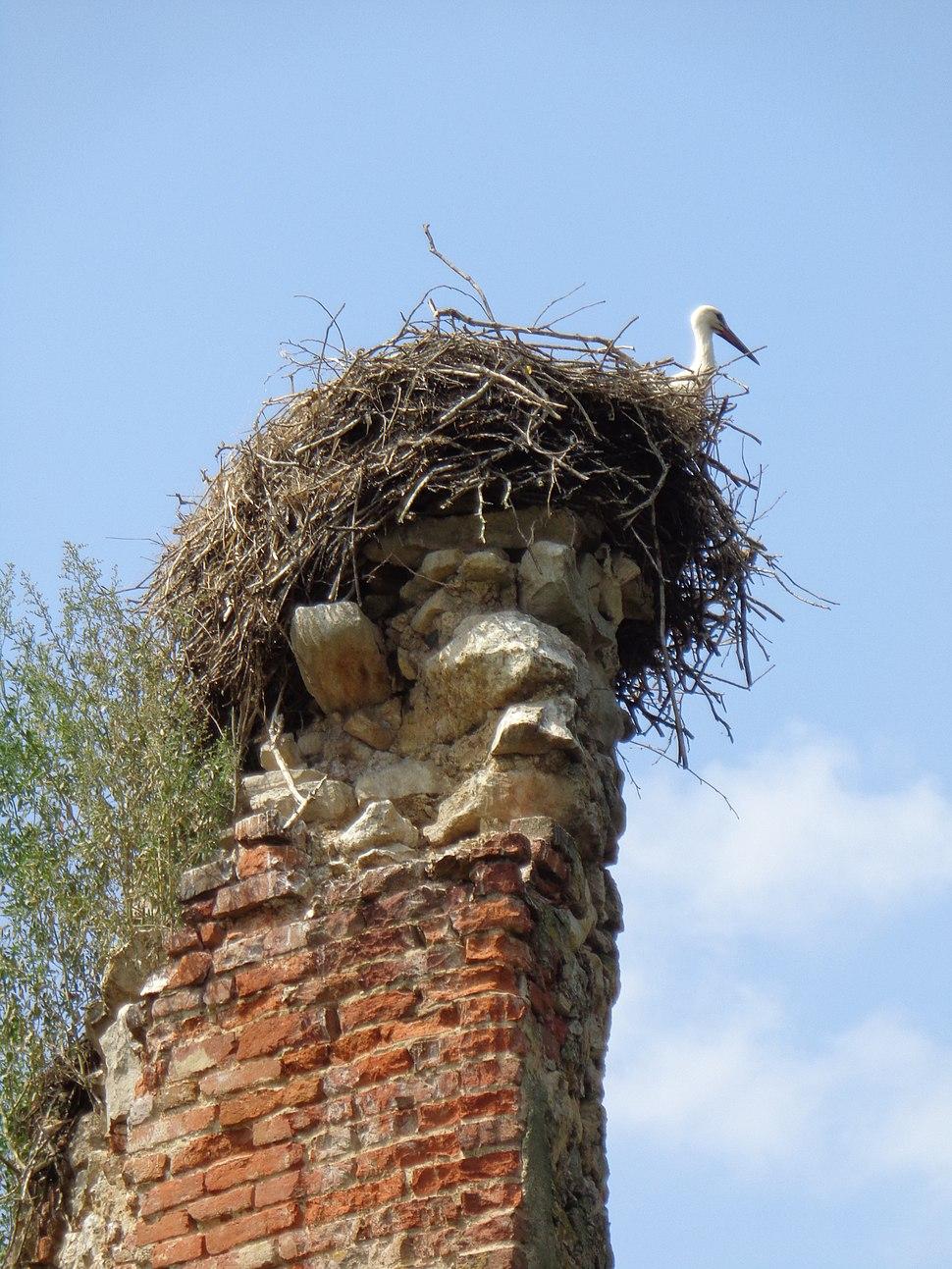 Dvorac Bisag - roda
